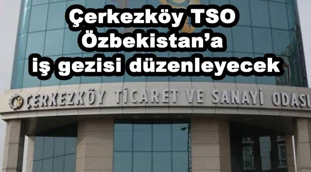 tekirdağ Çerkezköy TSO Özbekistan'a iş gezisi düzenleyecek