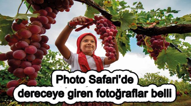 tekirdağ Photo Safari'de dereceye giren fotoğraflar belli oldu