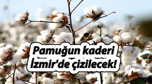 tekirdağ Pamuğun kaderi İzmir'de çizilecek!
